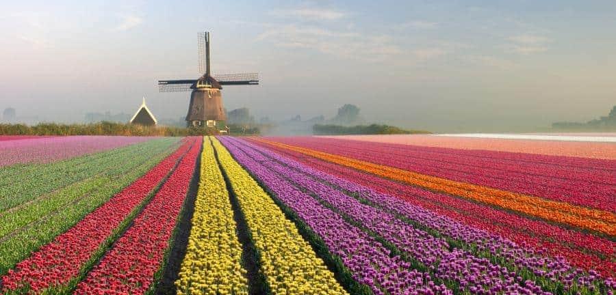 Bolsas para estudar na Holanda