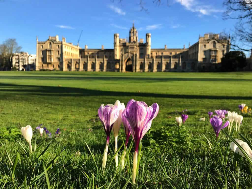 Trust: bolsas para pós-graduação em Cambridge, no Reino Unido