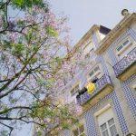 Bolsas de estudos parciais para mestrado em Portugal da universidade de Aveiro partiu intercambio