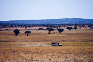 bolsa para viagem pela Tanzânia young global pioneers
