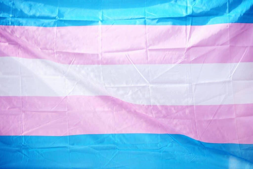 bolsa onu para pessoas trans ativistas trans partiu intercambio
