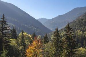mestrado em conservação e ecologia espanha espaços naturais protegidos