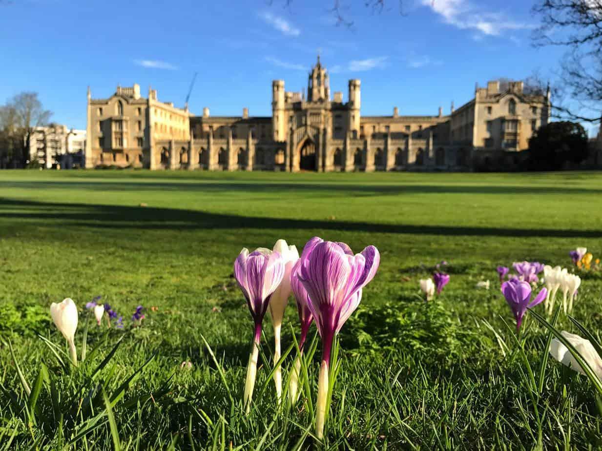 bolsas para pós-graduação em Cambridge
