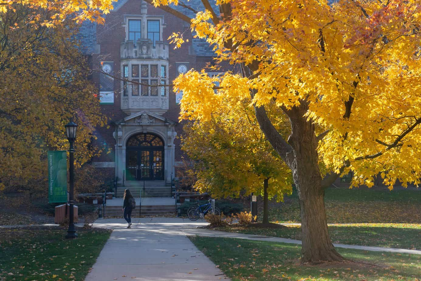 bolsas para faculdade nos Estados Unidos IWU Illinois